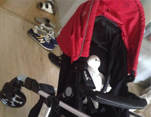 <b>pouch高景观婴儿推车评测</b>